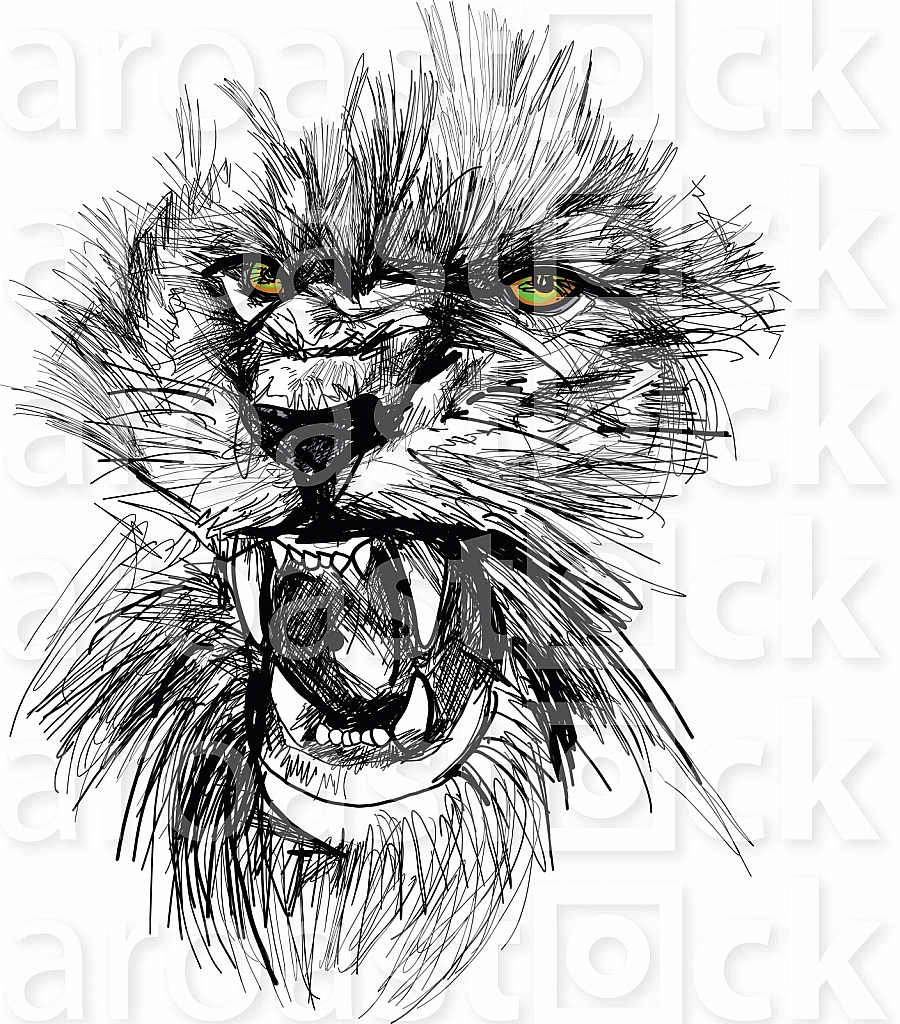 Sketch of lion head vector illustration